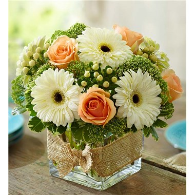 MODERN_ROSE_AND_GERBERA_DAISY_L